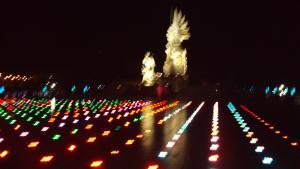 Hệ thống chiếu sáng tượng đài Long An